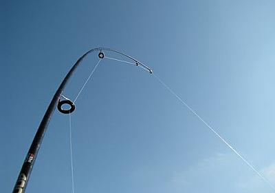 「海よりブルーな魚が釣れた!」青すぎて仰天するレベル:らばQ