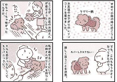 【犬マンガ】新しいレインコートを買いました。 - こぐま犬と散歩〜元保護犬の漫画日記〜