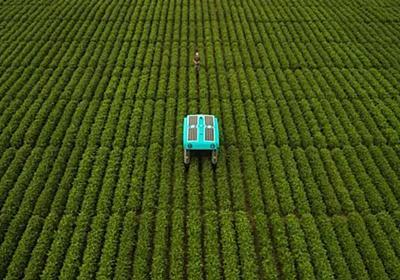 "Alphabetの次のムーンショットは""農業"" 畑ロボットでデータ収集中 - ITmedia NEWS"