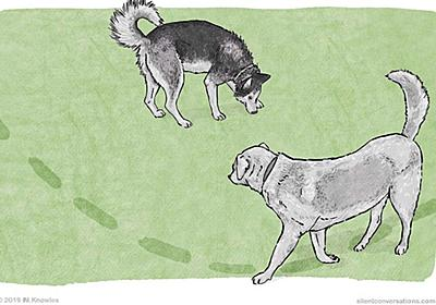 犬同士が出会ったときに回り込むような動きをする理由とは? - GIGAZINE