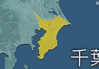 千葉県 新型コロナ 334人感染確認 3日連続で300人超   新型コロナ 国内感染者数   NHKニュース