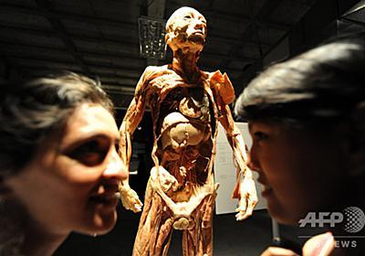 人体標本展を中止、拷問死した中国人の可能性 スイス 写真1枚 国際ニュース:AFPBB News