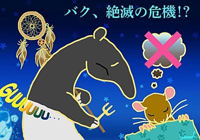 第96回 夢見る睡眠をなくしたマウスの誕生から考える   ナショナルジオグラフィック日本版サイト