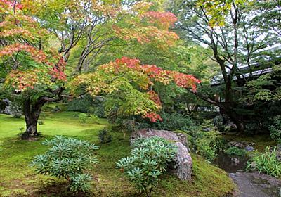 京都嵐山、宝厳院で初秋の獅子吼の庭を楽しむ! - ゆるっと京都 de スローライフ