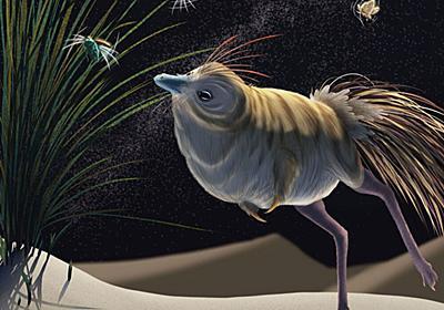恐竜の頭を調べてわかった、飛翔やコミュニケーションの進化 | ナショナルジオグラフィック日本版サイト