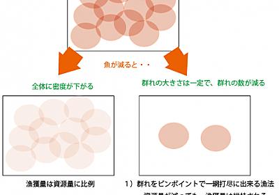 なぜ、巻き網やトロールは、魚が減っても漁獲が維持できるのか。そのメカニズムを解説 - 勝川俊雄公式サイト