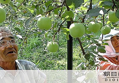 (現場へ!)自然を育む農業:3 養分失っても続けられる?:朝日新聞デジタル