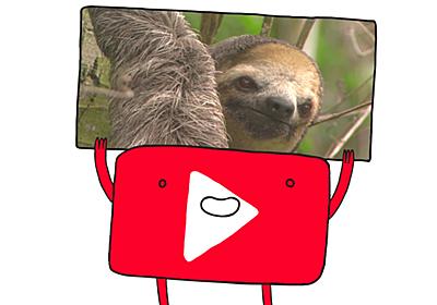 YouTubeに動画をアップロードすると何が起きるのか&どうやって動画が再生されるのか? - GIGAZINE