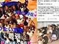 痛いニュース(ノ∀`) : 女性が子犬6匹連れて旅行に→車の中に放置→熱中症で全滅→死体を並べてSNSにアップ - ライブドアブログ