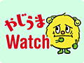 兵庫県警ホームページ、利用者に告知なく導入していたGoogleアナリティクスを撤去【やじうまWatch】 - INTERNET Watch
