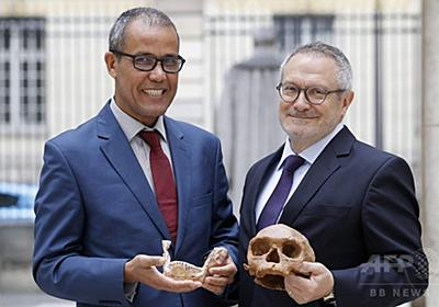 人類の起源は30万年前、定説覆す化石発見 写真3枚 国際ニュース:AFPBB News