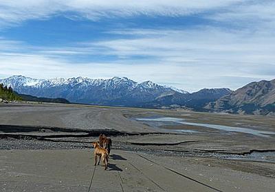 氷河が溶けてたった4日で巨大な川が消滅したことが明らかに - GIGAZINE