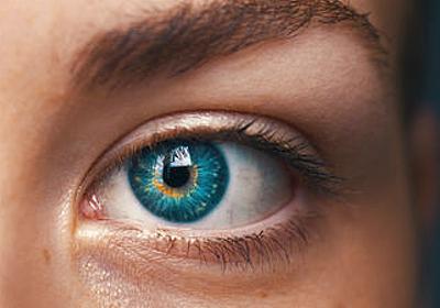 脳を破壊する「プリオン」は目から感染が広がる - GIGAZINE