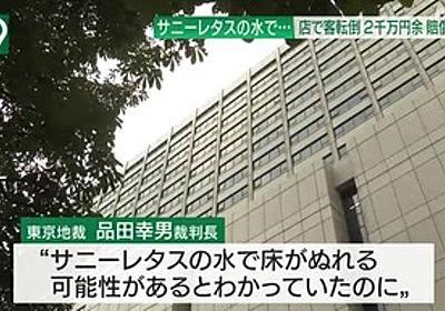痛いニュース(ノ∀`) : 買い物中にサニーレタスの水で転倒、店に2100万円の賠償命令…東京地裁 - ライブドアブログ