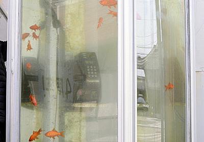 金魚電話ボックス:撤去へ 著作権でトラブル 奈良 - 毎日新聞