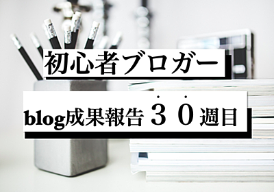 6000PVブロガーのブログ成果報告『30週間(6/13〜6/19)経過』今までしてきたこと。 - moritaku-PT's blog