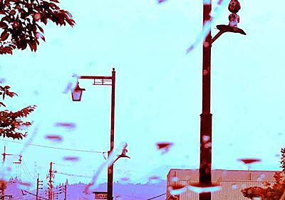 一滴ずつ落ちるコーヒーと苦い涙 | より良い社会を目指すメディア HIFUMIYO TIMES
