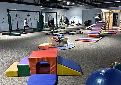 米国では発達障害の子ども向け遊び場が人気   発達障害ニュースと障害者福祉作業所のハンドメイド通販 たーとるうぃず