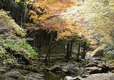 赤目四十八滝で耐寒紅葉めぐり2 - 自由悠遊
