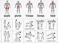 筋肉ごとに最適な筋トレがわかるチャートを使って、腕や足の筋肉を鍛えよう | ライフハッカー[日本版]