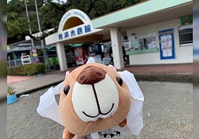桂浜水族館『「入館料1200円払って入る価値あるの?」って言われて怖くて泣いちゃった』とのツイートに「高いと思うなら無言で帰ってほしい」 - Togetter