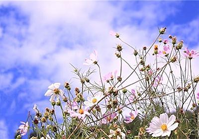 イキる人♬︎♡ - 訳ありなアタシの生き直しブログ〜反省の日々〜