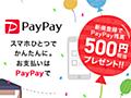 3Dセキュア(本人認証サービス)の対応と、クレジットカード不正利用への補償について - PayPayからのお知らせ
