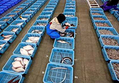 韓国の水産物規制容認 WTO一転「玉虫色」判決 (写真=ロイター) :日本経済新聞