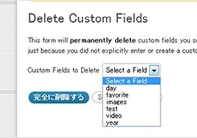 WordPressで無駄に追加してしまった不要なカスタムフィールドの名前を、簡単に削除するプラグイン | かちびと.net