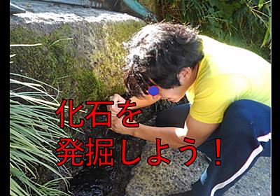 化石を発掘しろ!困ったらアレをしろ!化石堀り大作戦! - oyayubiSANのブっ飛びブログ