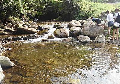 【茨城・アウトドア】御前山の秘境で、水を浴びる【相川】 | ちょっと自然な生活in茨城