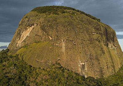 Google Earthを使って未知の熱帯雨林が発見される - GIGAZINE
