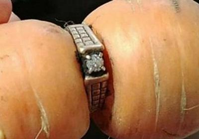 13年前に紛失した結婚指輪、なんとニンジンにはまった姿で見つかる | ハフポスト