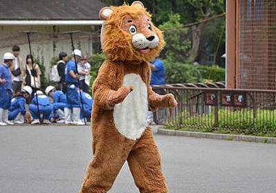 ライオン脱走に備え着ぐるみで訓練 開園中の訓練は初 愛媛・とべ動物園 - 毎日新聞