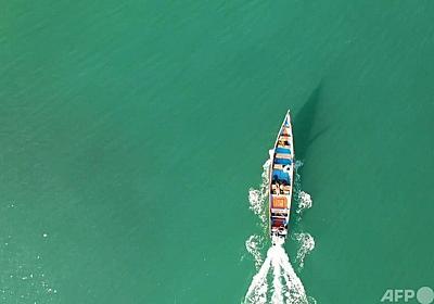 クジラの腹から1.6億円のお宝発見 イエメン漁師 写真1枚 国際ニュース:AFPBB News