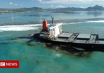 Why the Mauritius oil spill is so serious - BBC News