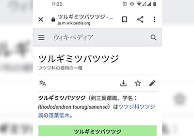 """アラビア語圏の方『日本語の""""つ""""は発音コスト高すぎる』→母語にはないためさまざまな国の方が苦戦「筒井つの 井筒にかけし…」 - Togetter"""