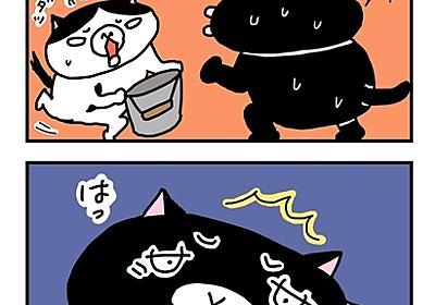 午前3時の黒猫。 - ネコノラ通信web