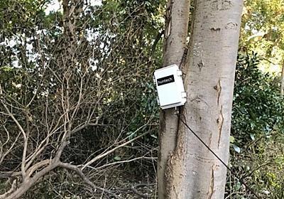 獲物がかかると通知する狩猟向けIoT機器「スマートトラップ」に新モデル - CNET Japan