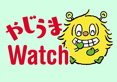 ゲームボーイの「ポケットカメラ」がテレビ会議のウェブカメラに? 90年代のパーツで作る外付けカメラが面白い【やじうまWatch】 - INTERNET Watch