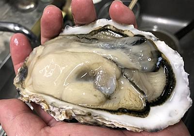 牡蠣 - パル