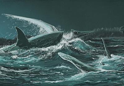 恐竜時代のサメ、空飛ぶ翼竜を食べていた   ナショナルジオグラフィック日本版サイト