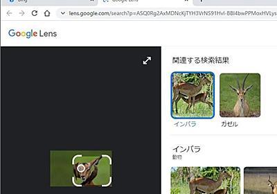 デスクトップ版「Google Chrome」に「Google レンズ」検索機能 ~ベータ版でテスト中 - 窓の杜