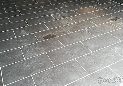 残念! 高圧洗浄機でもタイルのコンクリート汚れが落ちなかった! - ねこのおしごと