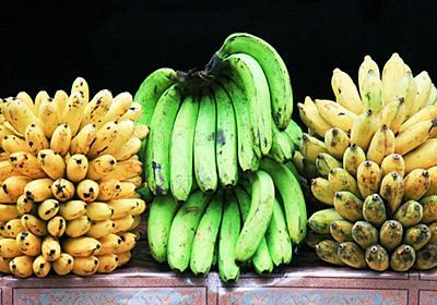 いま、バナナが絶滅の危機にひんしている WIRED.jp