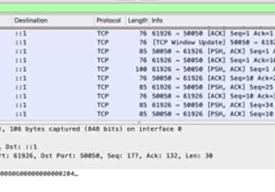 Wireshark で gRPC・HTTP/2 通信をキャプチャしても TCP としか判定されない - 理系学生日記