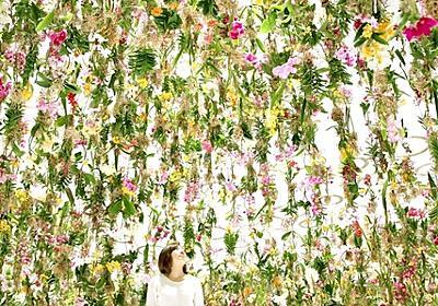 """無数の花で空間を埋め尽くす""""浮遊する庭園""""チームラボが公開 日本科学未来館で5/10まで - はてなニュース"""