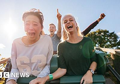 Ig Nobel win for kidney stone removing roller-coaster - BBC News