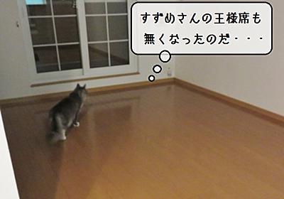 猫雑記 ~積み込み完了!~ - 猫と雀と熱帯魚