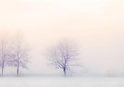 冬季うつ病と吸魂鬼ディメンターの共通点と対策 - 本当に本が読みたくなる読書のブログ